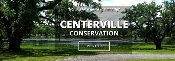 CentervilleBG2